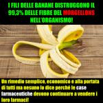 I fili delle banane distruggono il morgellons