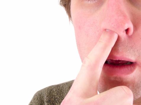 Mangiare caccole sconfigge l'influenza e fa bene – La Chiave Orgonica