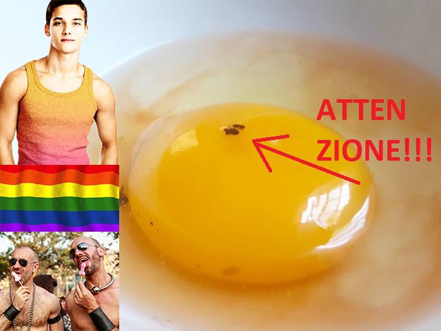 Mangiare queste uova OGM potrebbe farti diventare gay, e nessuno lo dice