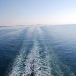 LE UOVA DI PITONE #4 – Annientiamo le Ship-Trails!