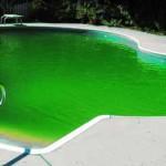 Bario al posto del cloro in piscina: ce lo chiede l'Europa