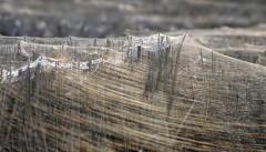 EMERGENZA CHIMICA: Italia sommersa da una coltre di filamenti nanopolimerici