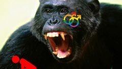 Invasione di Uomini-Scimmia Gay mette in fuga gli africani, e l'Italia si prepara ad accoglierli